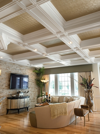 Acoustical Ceilings Residential Suspended